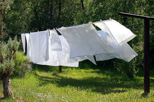 draps blancs qui sechent